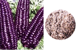 Raw Organic Purple Corn Flour 250g