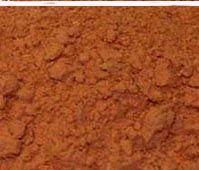 Organic Cat's Claw Powder 125g