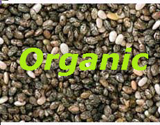 Raw Organic Chia Seeds 250g