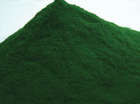 Organic Chlorella Powder 60g