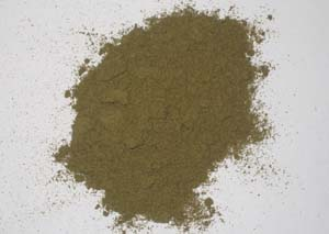 Premium Raw Kelp Powder 250g