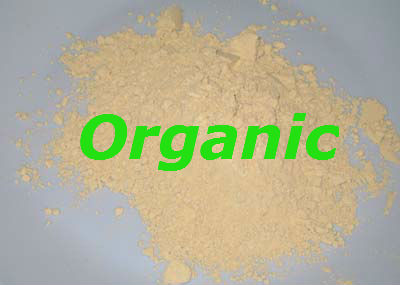 Organic Rice Protein Powder 250g