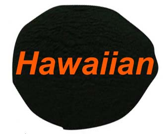 Premium Hawaiian Spirulina Powder 125g